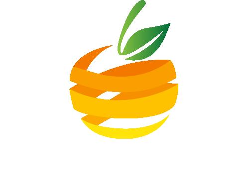 Ocds Logo Symmetric White